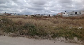 T 48.- Excelente terreno urbano en Santa Matilde.
